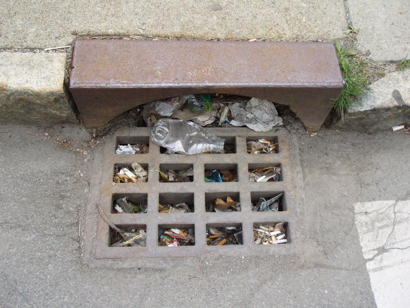 Photo of clogged storm drain by J. Panasiewicz