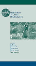 Picture of Healthy Lawns brochure