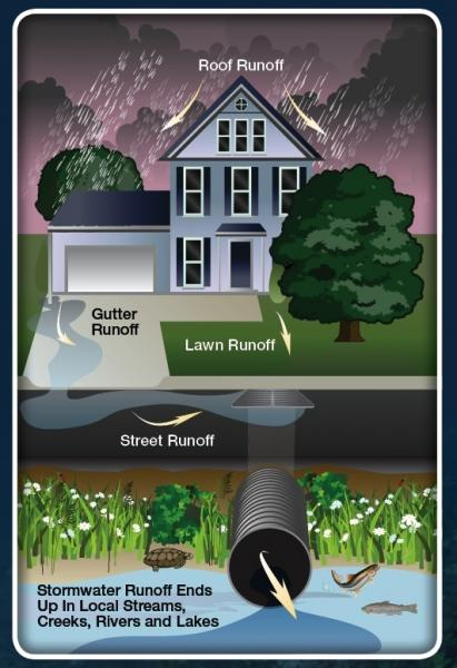 How Can You Prevent Stormwater Pollution Environment