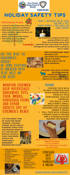 Infograph of Holiday Safety Tips