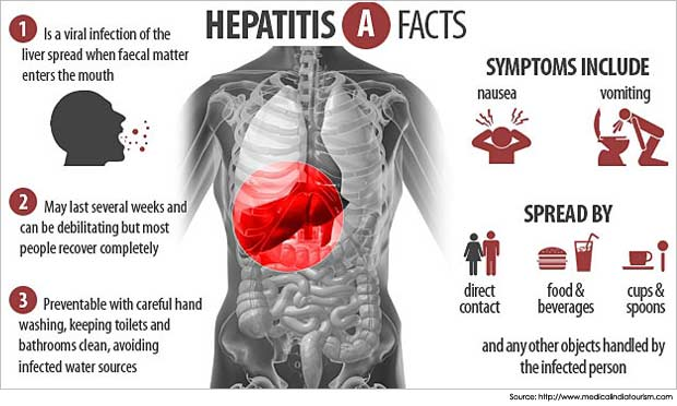 Hep A facts graphic