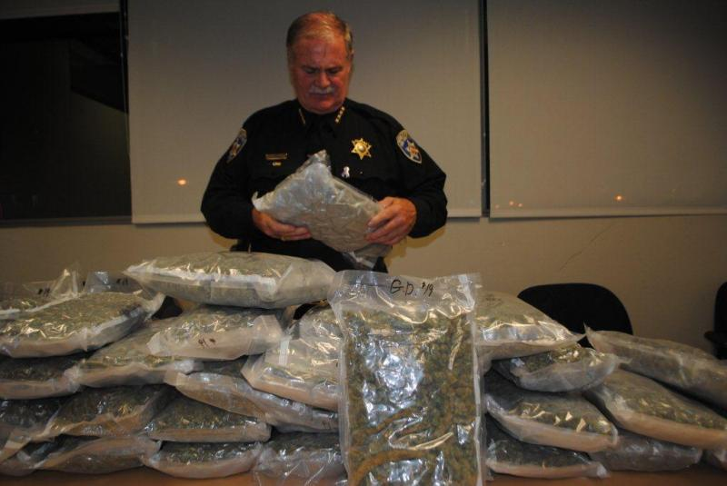 Sheriff Tim Howard inspects one of the 33 pounds of marijuana recently confiscated in Amherst