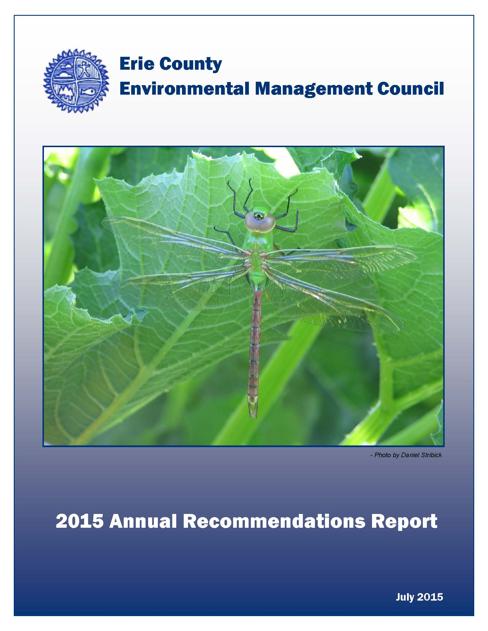 2015 Annual Recommendation Report Cover