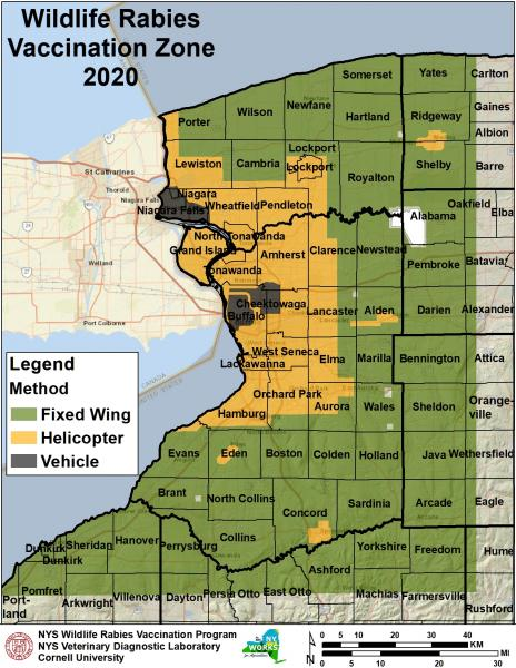 Map of WNY counties showing rabies vaccination zon for 2020
